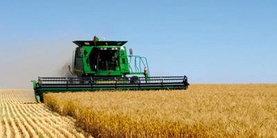 Agriculture : le Maroc emprunte 150 millions de dollars à la Banque mondiale