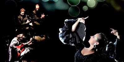 Andalussyat 2014 : à la recherche  des Noubas perdues