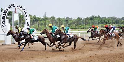 Course de chevaux sur golf : quand le Maroc d'en haut côtoie celui du bas