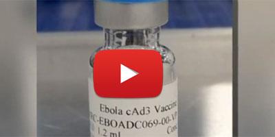 Ebola : des vaccins prometteurs ?