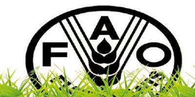 Le Maroc primé par la FAO