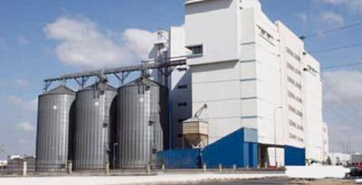 Fandy Group investit 300 MDH dans la plus grande minoterie du pays