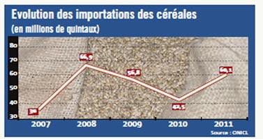 Compensation : Détente des cours du blé, mais la volatilité peut reprendre