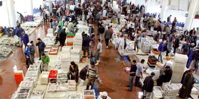 Poisson : le volume des ventes sur le marché de gros de Casablanca a quadruplé depuis l'ouverture en 2009