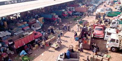 Maroc Vert : Nouvelle orientation de commercialisation des produits agricoles