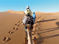 Le Maroc accueille le gotha du tourisme africain et mondial