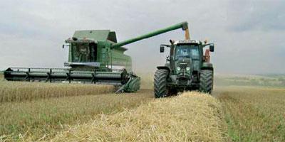 Maroc campagne Agricole 2013 08 07