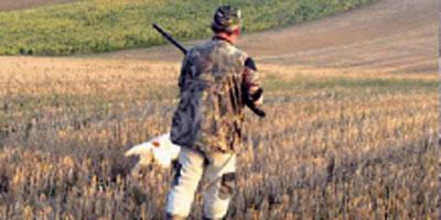 Chasse 2014-2015 : 71 500 chasseurs à l'assaut du gibier