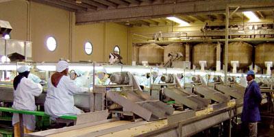 Maroc : Fort ralentissement des activités non agricoles