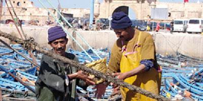 Pêche artisanale : une convention pour convaincre les marins récalcitrants d'adhérer à l'AMO