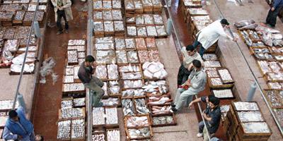 Poisson : un marché de gros ultramoderne à Marrakech