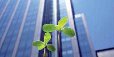 Protection de l'environnement :  les entreprises en rang dispersé