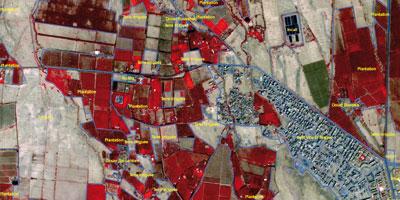Le Maroc a son Â«Googlemap» del'agriculture: 20 millions d'hectares numérisés et mis à jour
