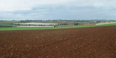 Enfin une loi pour protéger les propriétaires de terrains non immatriculés