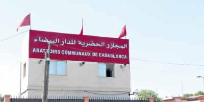 Abattoirs de Casablanca : le Conseil de la ville tente de sauver les meubles