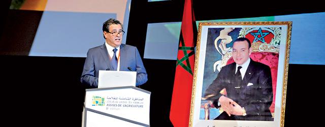 Pérenniser les acquis du Plan Maroc Vert,  le nouveau pari du gouvernement