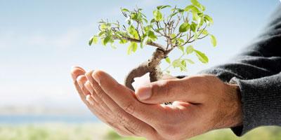 Ce qu'il faut savoir sur les contrats d'assurance vie