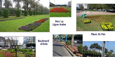 Entre 45 et 50 MDH par an pour l'entretien des espaces verts de Casablanca