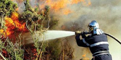 Incendie à la Ceinture Verte au niveau de la route côtière de Rabat