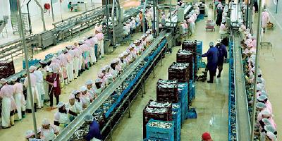 L'industrie agroalimentaire mise sur l'Afrique