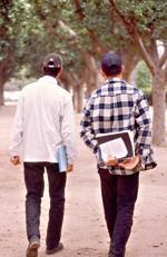 Les jeunes préfèrent le salariat à la prise de risque