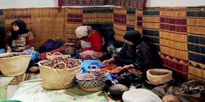 Maroc : 332 coopératives agréées durant le premier trimestre 2013