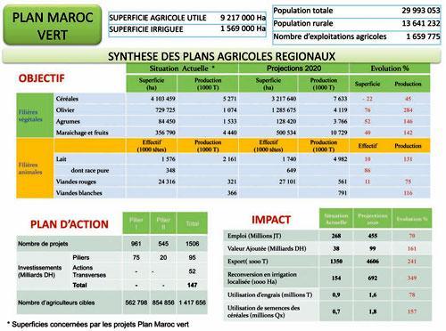 Plan Maroc Vert : ce que produira chaque région