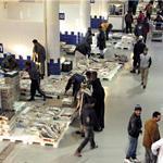 Poisson : 8 600 tonnes ont transité en 5 mois par le marché de gros de Casablanca