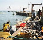 Un accord de pêche avec la Russie