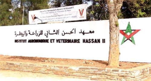 L'Institut agronomique et vétérinaire Hassan II se réorganise