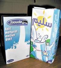 Jaouda, le petit poucet qui fait de l'ombre à la Centrale laitière