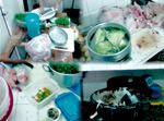Restauration, le quart des aliments servis non conforme en matière d'hygiène !