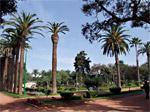 Espaces verts : 250 MDH pour qu'enfin Casablanca respire !