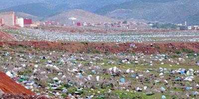 Sacs en plastique : les industriels peinent à se convertir au dégradable