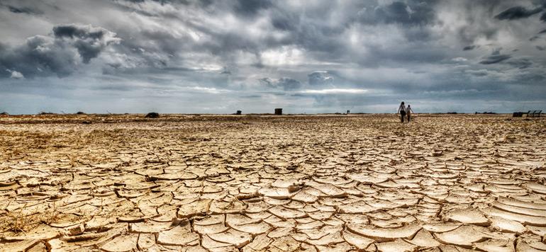 La Banque mondiale consacre un budget de 16 milliards de dollars à la lutte contre les changements climatiques en Afrique