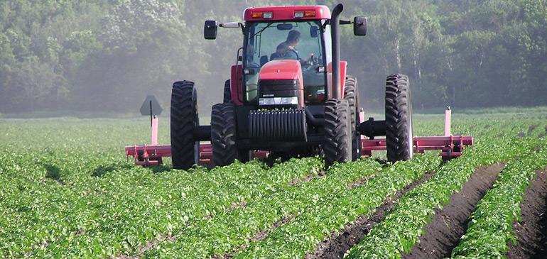 El Jadida : L'activité agricole, un levier de développement de la province