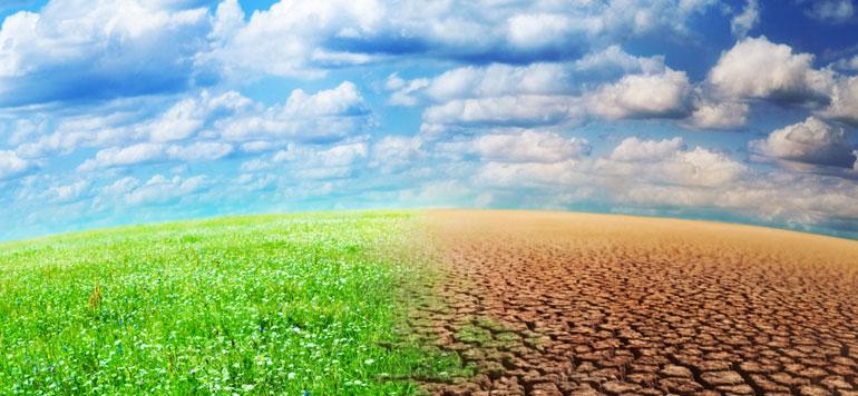 Assurance agricole : le taux de pénétration multiplié par quatre