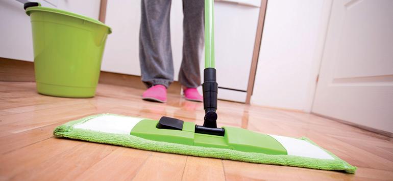 Travail domestique : la loi de toutes les polémiques !