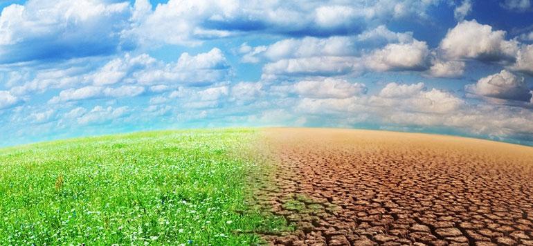 La société civile organise les PRE-COP 22