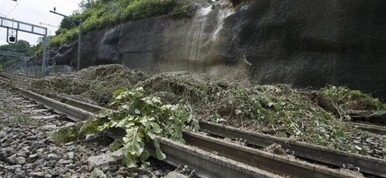 La circulation des trains perturbée par un glissement de terrain