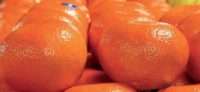 L'origine marocaine de la mandarine Nadorcott confirmée par une instance européenne