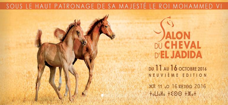 Salon du Cheval : les arts équestres traditionnels en tête d'affiche