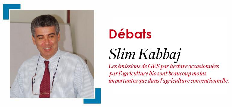 Le bio au Maroc : quels enjeux à la veille de la COP22