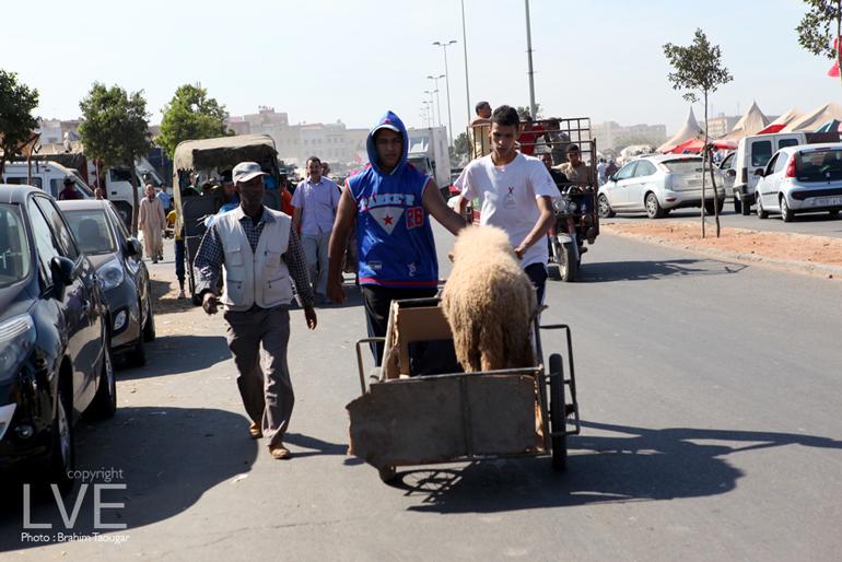 Aid Al Adha et vacances: Des contraintes et des opportunités