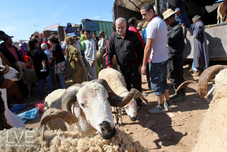 ONSSA : Une série de mesures pour Aid Al Adha
