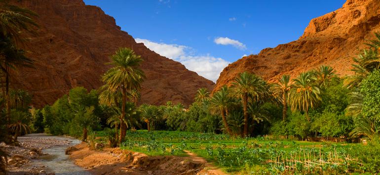 Ouarzazate se dote d'un Centre international des études et de recherches stratégiques