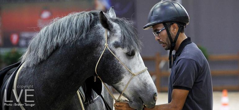 Salon du cheval d'El Jadida : La SOREC valorise les activités équestres
