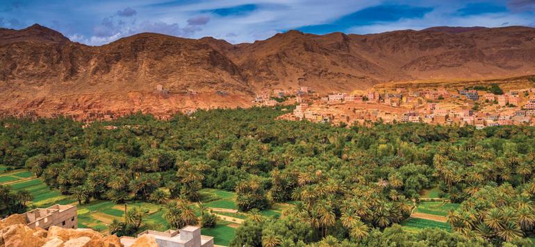 Les oasis de Tafilalet menacées