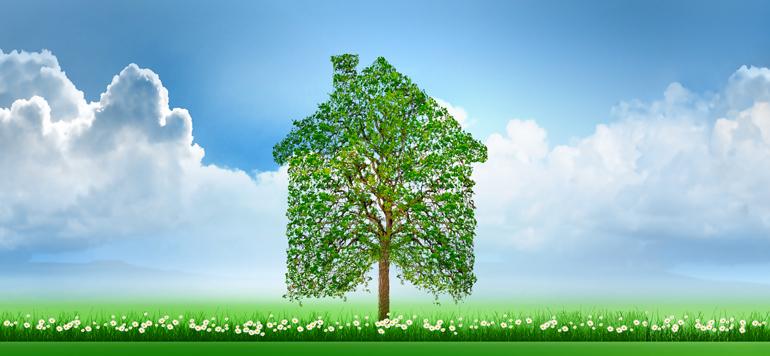 Bâtiment et construction, principaux acteurs dans la réalisation des objectifs du développement durable