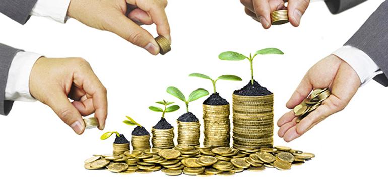 Dans les coulisses des futures banques participatives